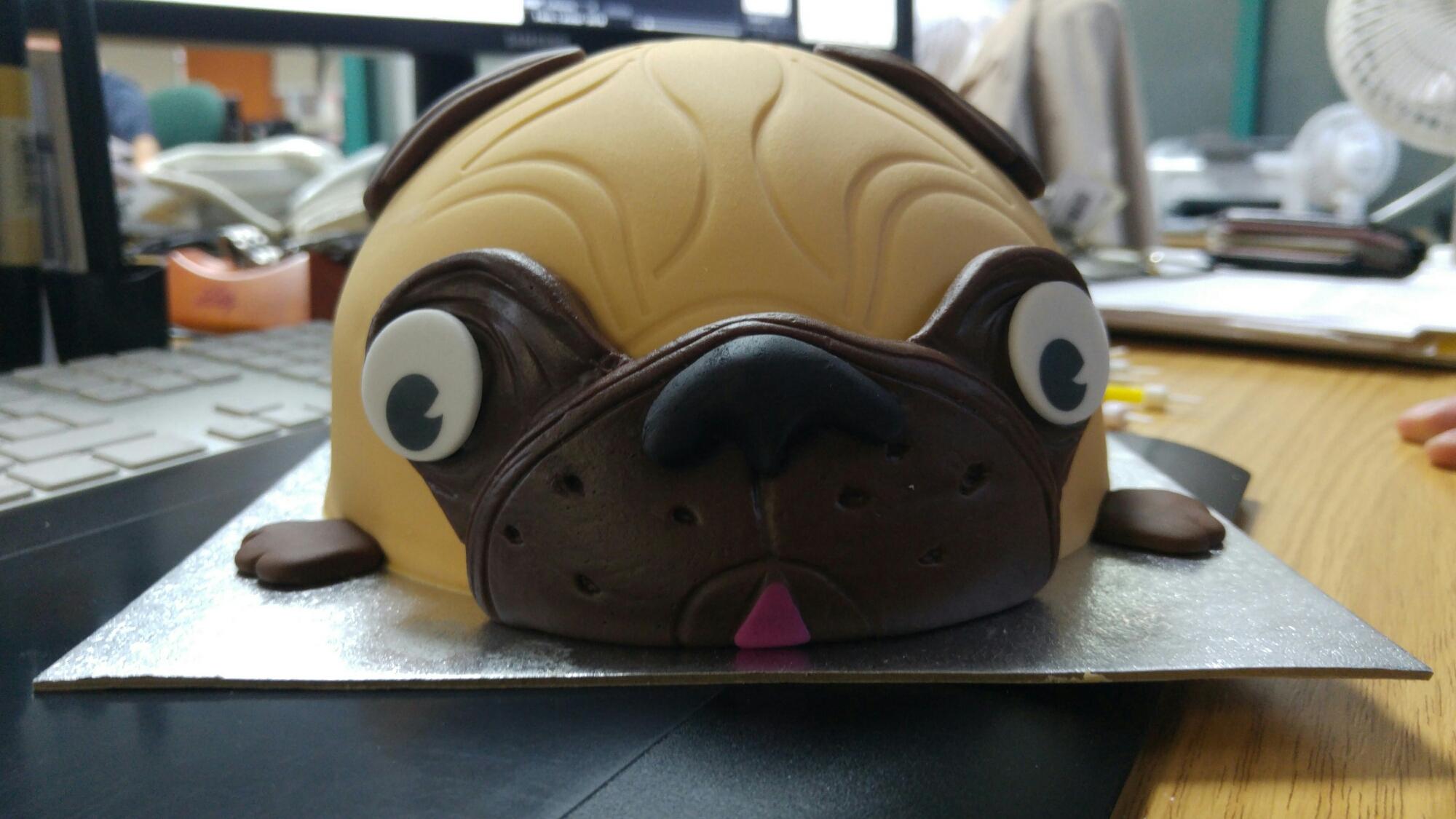 Remarkable 04 11 15 Pug Birthday Cake Steph Jones Daily Blog Funny Birthday Cards Online Bapapcheapnameinfo